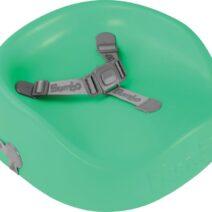 booster seat aqua